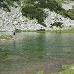 В търсене на вода